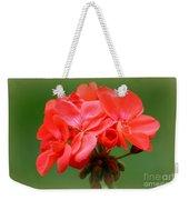 Coral Geraniums Weekender Tote Bag