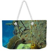 Coral Growth On A Ship Wreck Weekender Tote Bag