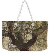 Cork Oak Tree Weekender Tote Bag