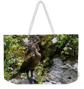 Cormorants-one Weekender Tote Bag