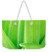 Corn Lily Leaf Detail Yosemite Np California Weekender Tote Bag