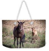 Cortez Colorado Mustangs Weekender Tote Bag