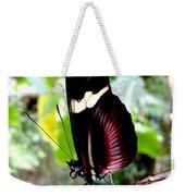 Costa Rican False Postman Butterfly Weekender Tote Bag