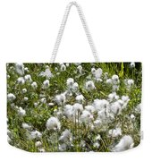 Cotton Grass On Homestead Trail In Homer-ak- Weekender Tote Bag