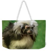 Cotton-top Contemplation Weekender Tote Bag