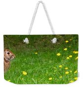 Cottontail Rabbit Weekender Tote Bag