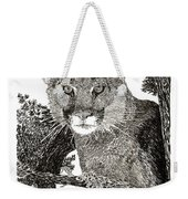 Cougar From Colorado Weekender Tote Bag