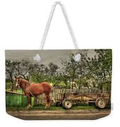 Country Life Weekender Tote Bag by Evelina Kremsdorf