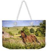 Countryside Horse Weekender Tote Bag