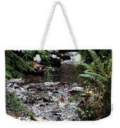 Covell Creek 1 Weekender Tote Bag
