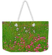 Cow Clover And Ox-eye Daisies On Campobello I Weekender Tote Bag