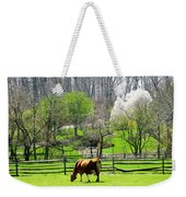 Cow Grazing In Pasture In Spring Weekender Tote Bag