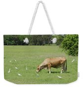 Cow Grazing With Egret Weekender Tote Bag