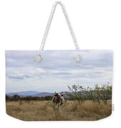 Cow In Pasture Weekender Tote Bag