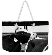 Cow Just Resting His Chin Weekender Tote Bag
