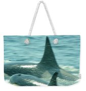 Cow Orca And Her Calf Weekender Tote Bag