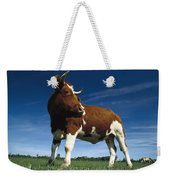 Cow Standing In Field Germany Weekender Tote Bag