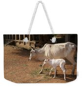 Cows In Hampi Weekender Tote Bag