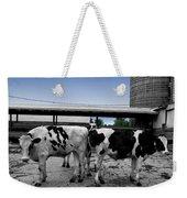 Cows Peek A Boo Weekender Tote Bag