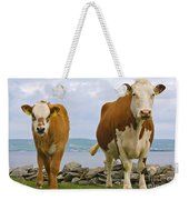 Cows Weekender Tote Bag by Terry Whittaker