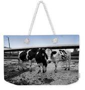 Cows Three In One Weekender Tote Bag