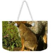 Coyote And Pup Weekender Tote Bag