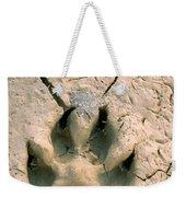 Coyote Print Weekender Tote Bag