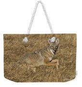 Coyote Running Weekender Tote Bag