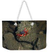 Crab Cake Weekender Tote Bag