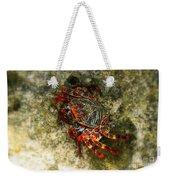 Crab In Cozumel Weekender Tote Bag