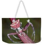 Crab Spider Hunting On Orchid Weekender Tote Bag