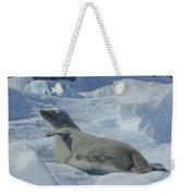 Crabeater Seal On An Iceberg Weekender Tote Bag