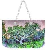 Craggy Gardens North Carolina Blue Ridge Parkway Autumn Nc Sceni Weekender Tote Bag