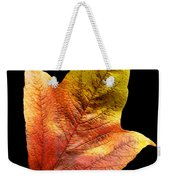 Cranberry Tree Leaf Isolated On White Weekender Tote Bag