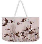 Cranes Across The Sky Weekender Tote Bag by Don Schwartz