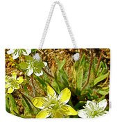 Cream Cups In Antelope Valley California Poppy Reserve Near Lancaster-california  Weekender Tote Bag
