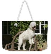 Cream Labradoodle On Wooden Chair Weekender Tote Bag
