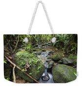 Creek In Mountain Rainforest Costa Rica Weekender Tote Bag