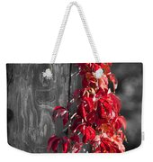 Creeper On Pole Desaturated Weekender Tote Bag