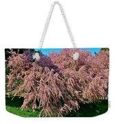 Crepey Myrtle Tree In Istanbul-turkey Weekender Tote Bag