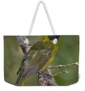 Crimson-collared Grosbeak Weekender Tote Bag
