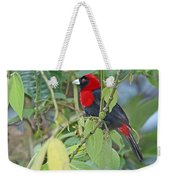 Crimson-collared Tanager Weekender Tote Bag