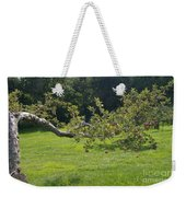 Crooked Apple Tree Weekender Tote Bag