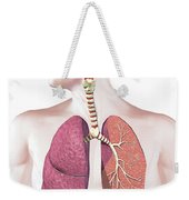 Cross Section Of Human Respiratory Weekender Tote Bag