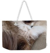 Crossed Paws Weekender Tote Bag