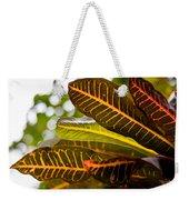 Croton Weekender Tote Bag