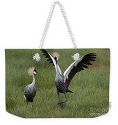 Crowned Cane Courtship Display Weekender Tote Bag