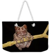 Crowned Frog Costa Rica Weekender Tote Bag