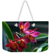 Ctna New River Orchid Weekender Tote Bag
