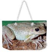 Cuban Tree Frog Osteopilus Weekender Tote Bag